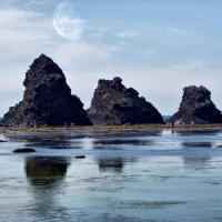 Тур на Шантарские острова
